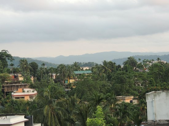Prabhakar Homestay: Nice view from the room
