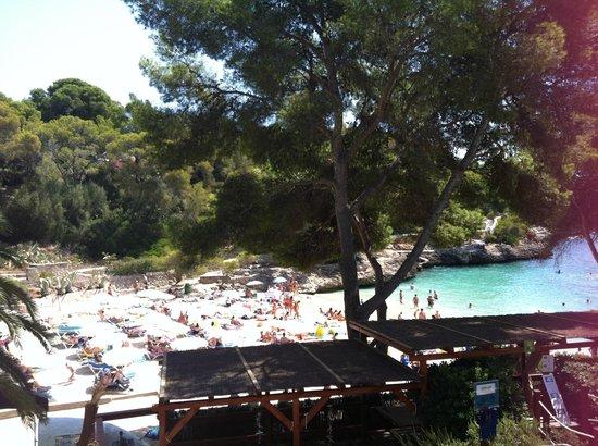 Hotel Cala d'Or: The beach