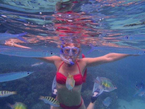 Lomani Island Resort: Great snorkelling off the Sand Cay.