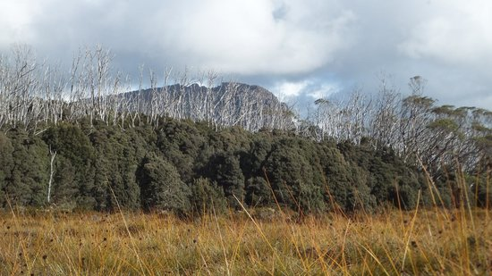 Cradle Mountain Huts: The views are always changing with soft autumn lighting