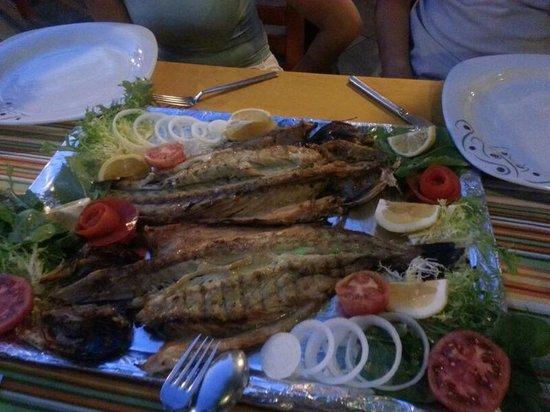 Zeytin Restaurant: LEZİZ DENİZ LEVREĞİ