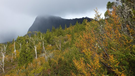Cradle Mountain Huts: Another tantalising mountain top