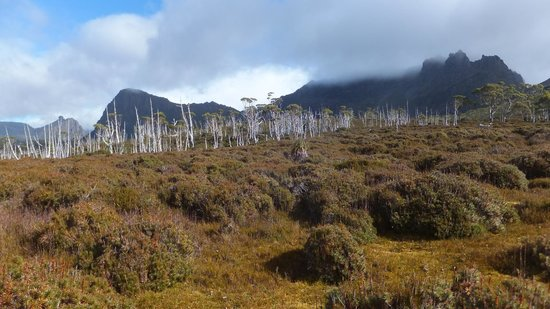 Cradle Mountain Huts: No bleached out photos in autumn...