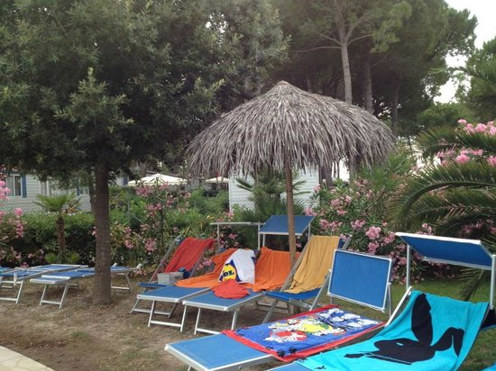 Camping Village Pino Mare: Lots of sunbeds and umbrellas