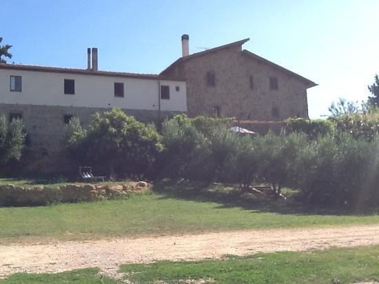 Agriturismo Renello: Un castello del 1300 tra gli ulivi