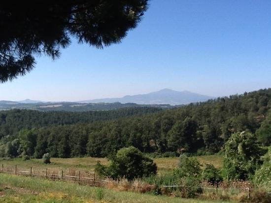 Agriturismo Renello: stupenda veduta del monte Amiata