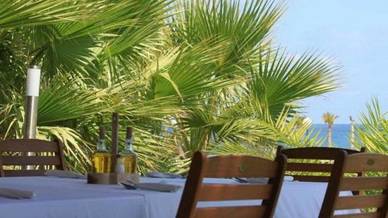 The Lobster Restaurant : Our terrace