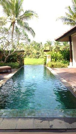 The Chedi Club Tanah Gajah, Ubud, Bali – a GHM hotel : Piscine privé de la Pool villa