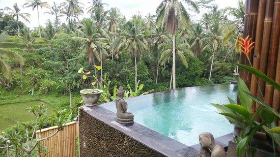 Capung Sakti Cottages: Vue en sortant de la chambre