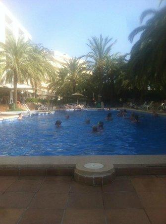 Cosmopolitan: piscina da rinnovare