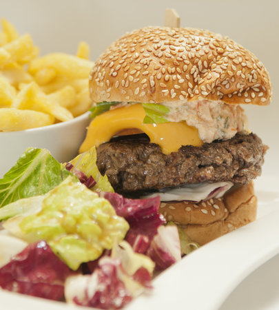 Hôtel Concorde Montparnasse: Cheeseburger Catalogne (180g), Accompagné de Frite et de Salade