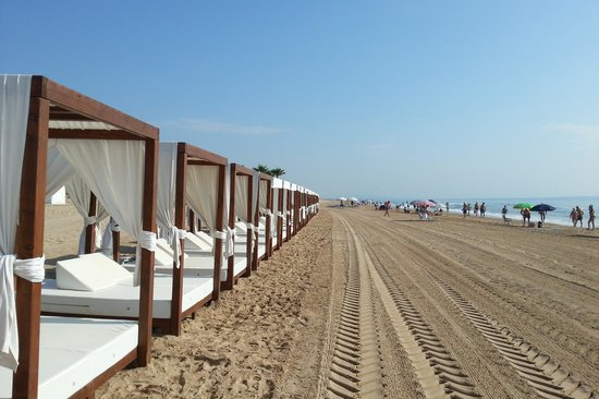 Guardamar del Segura, İspanya: Sky Beds for rent