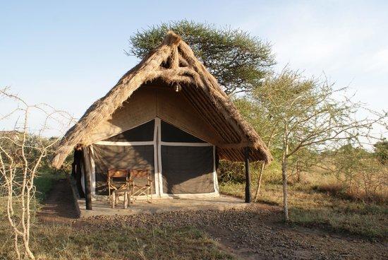 Robanda Tented Camp: The room