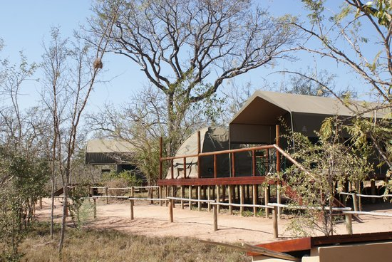 Tydon Safari Camp: The camp