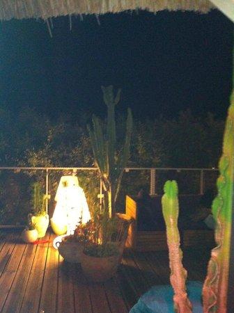 Camping Vigna Maggiore : terrasse bar de nuit
