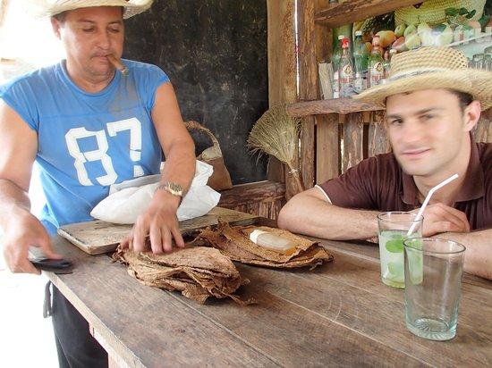 Villa Los Reyes: Farm