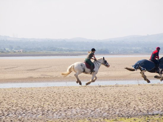 Anglesey Riding Centre : riding on the beach.