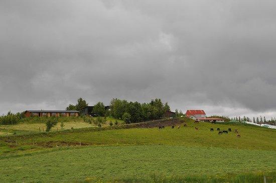 Farmhotel Efstidalur: Farm