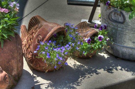 Ephraim Motel: Flowers