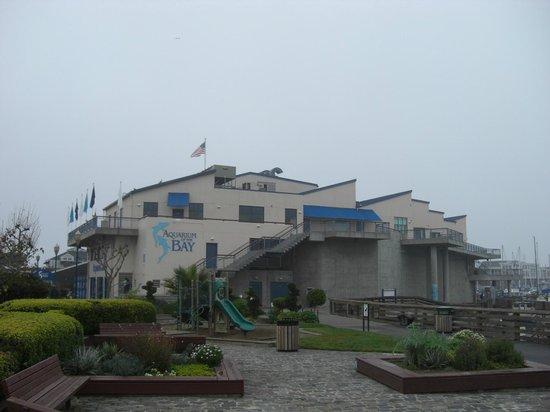 Teatr Natury Picture Of Aquarium Of The Bay San