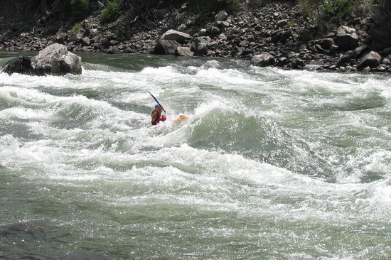 Yellowstone Raft Company: Gabe hits a big one.