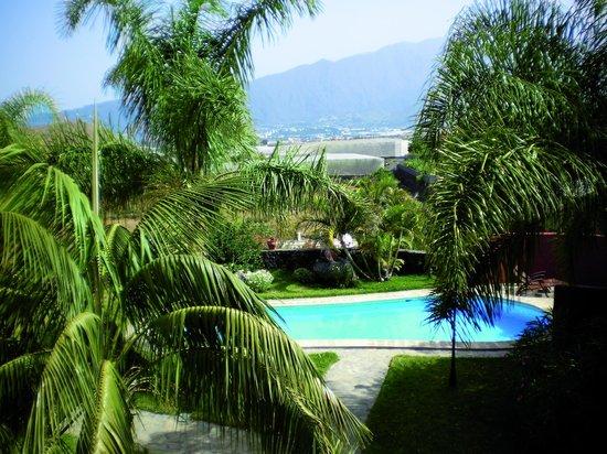 Finca El Moral: la piscina y jardines desde mi apartamento