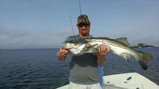 Shallow Point Charters: Huge Snook if you like bass on Sterioids!