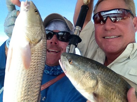 Shallow Point Charters: More Redfish!  Tampa Bay all the way!