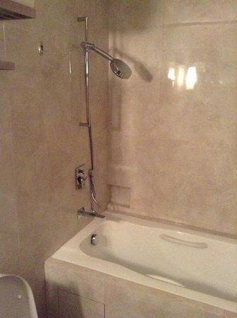 Park Avenue Changi Hotel: the shower