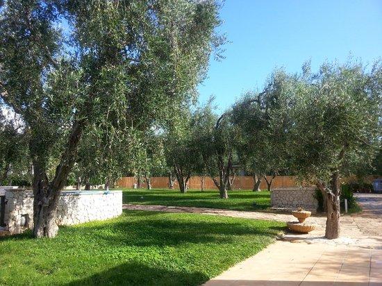 Villaggio San Matteo Resort: le camere immerse negli uliveti