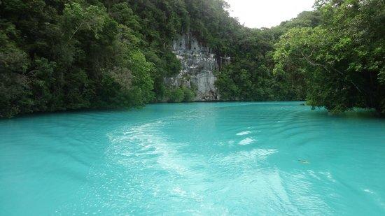 Palau Plantation Resort: Environment