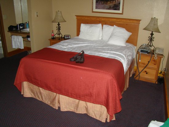 BEST WESTERN Hickok House: comfortable bed