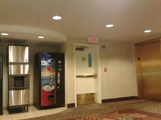 Crowne Plaza Dulles Airport Hotel: room level lobby