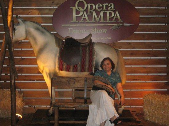 Opera Pampa: Enel salón museo.