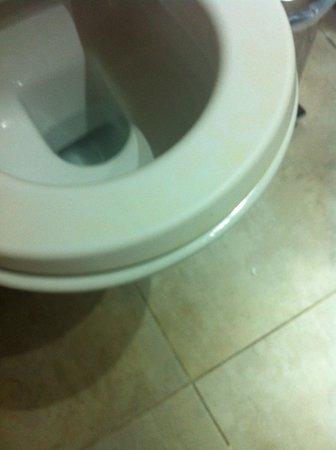 "Istion Club Hotel & Spa: Вот такой вот ""чистый"" унитаз"