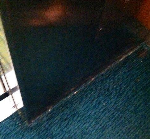 SpringHill Suites Harrisburg Hershey: Dirty elevator floor