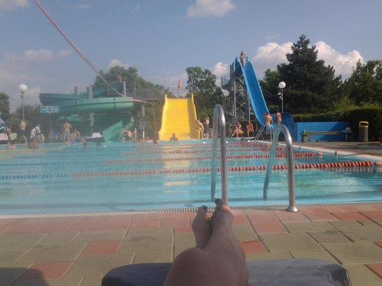 Hotel Lipa : scivoli della piscina olimpionica.