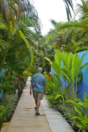 Alma del Pacifico Beach Hotel & Spa: THE PATH TO VILLAS