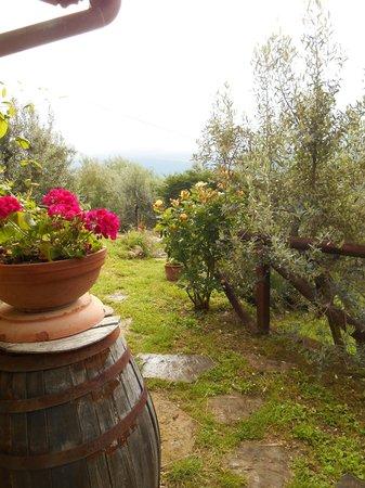Casa Mezzuola Agriturismo: Garden path at the door