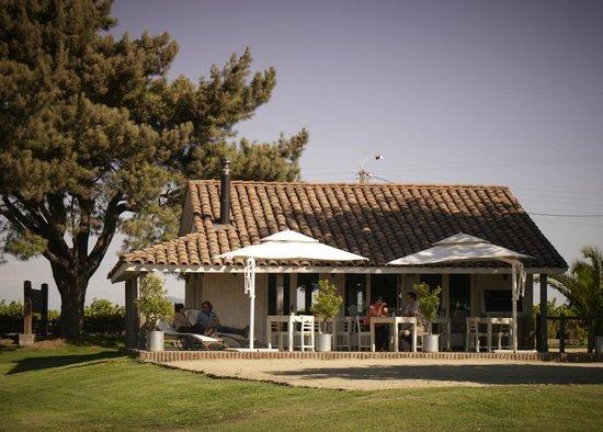 Cafe de la Vina Viu Manent, Santa Cruz - Restaurant Reviews, Phone