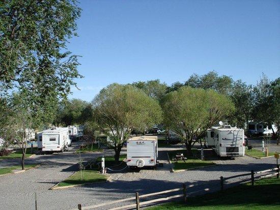 Montrose KOA : View of the park
