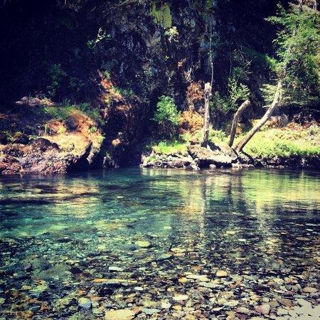 La Wis Wis Campground: Wonderful views