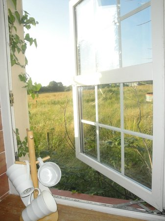 Dangan Lodge Cottages: View of fields from kitchen in cottage 2