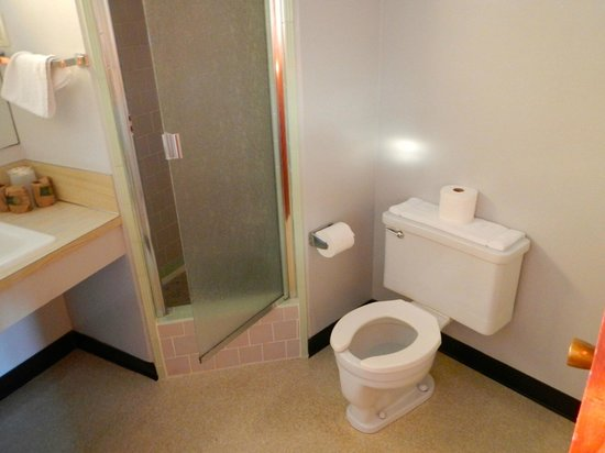 Curly Redwood Lodge: Spacious bathroom includes ceramic shower cubicle.
