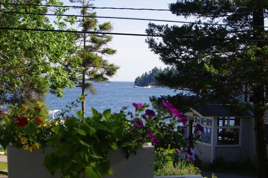 Linekin Bay Resort照片