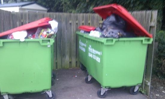 Seton Sands Holiday Park - Haven: overflowing bins, the seagulls loved them!