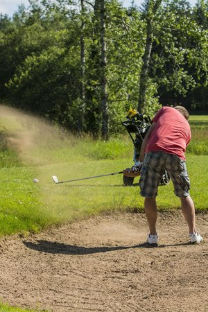 Brown Trout Golf & Country Inn: Chip
