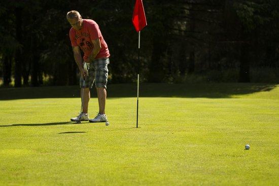 Brown Trout Golf & Country Inn: The hole aint big enough