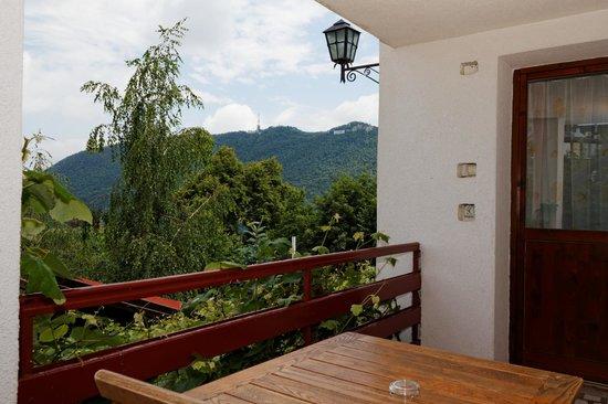 Stejaris: View from room