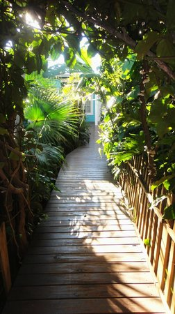 "Secret Garden Iguazu B&B: ""Jungle"" Gardens - Walkway to the Rooms"